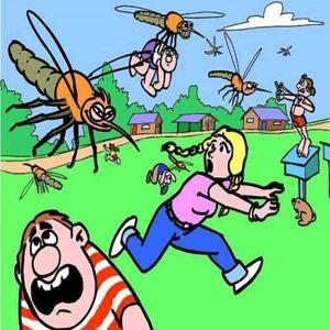 Почему важно знать о начале комариного сезона?
